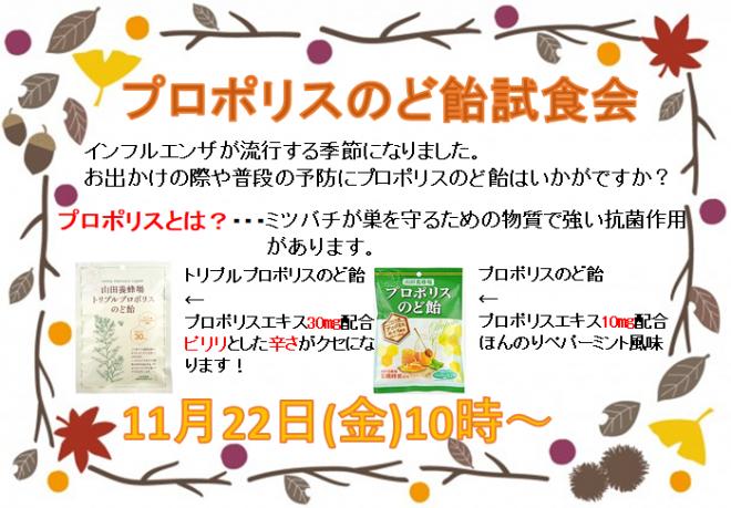 131.11月健康フェア.png